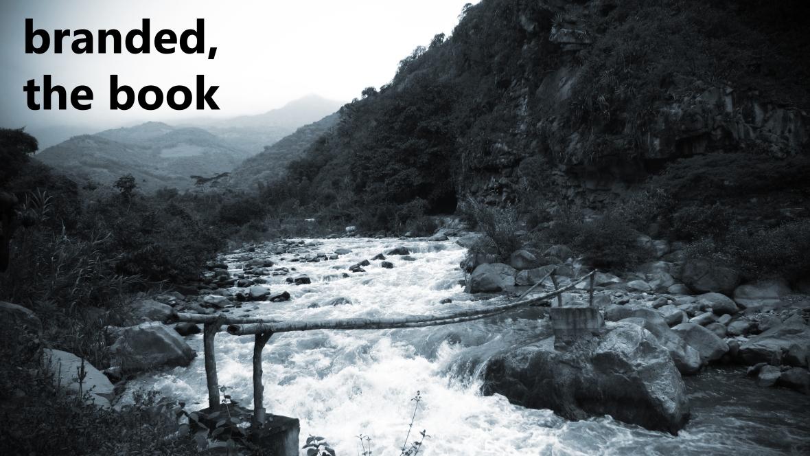 peru_bridge_tintblue_book